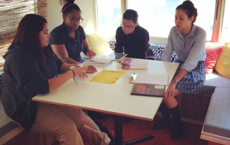 Senior Biomedical and Engineering students team up for year-long projects