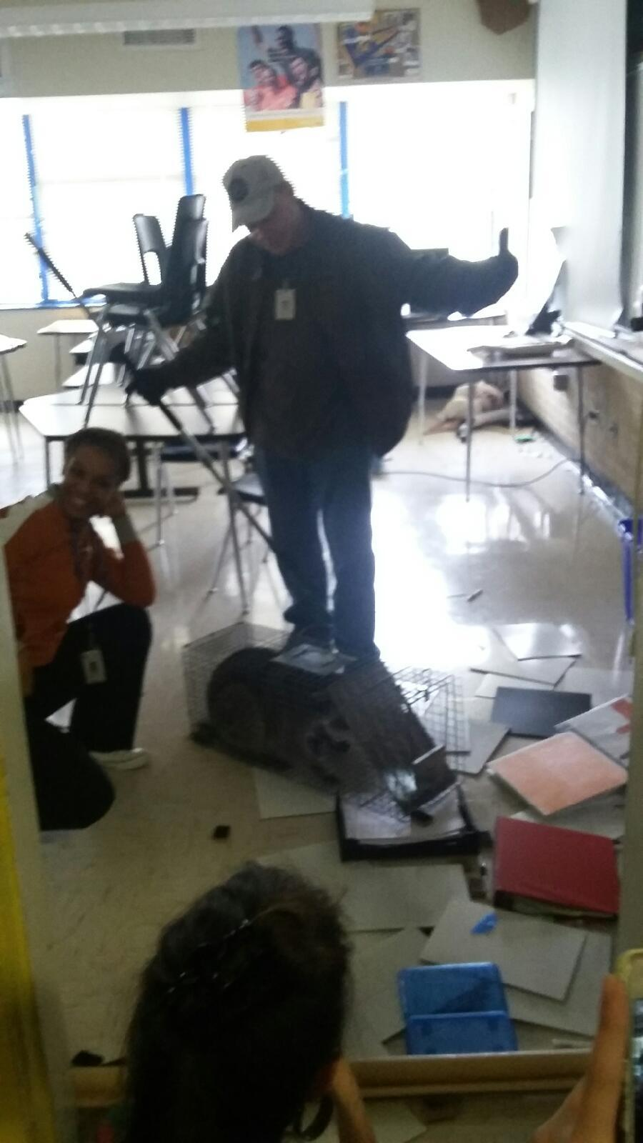 A look at some of the disarray and damage done by the raccoon in Mrs. Par's classroom on December 2nd.
