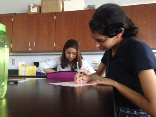 Seniors actively work on assignments during AP Environmental Science.