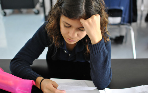 Kimberly Olea (11) sports a knit sweater during chemistry class.