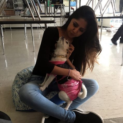 Keyla Blanco (11) holds therapy dog Bailey during the Ann Richards Real Talk intersession.