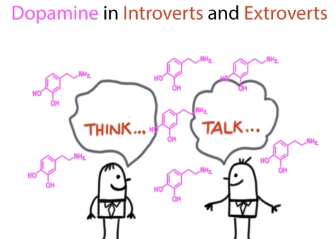 Dopamine in Introverts and Extroverts